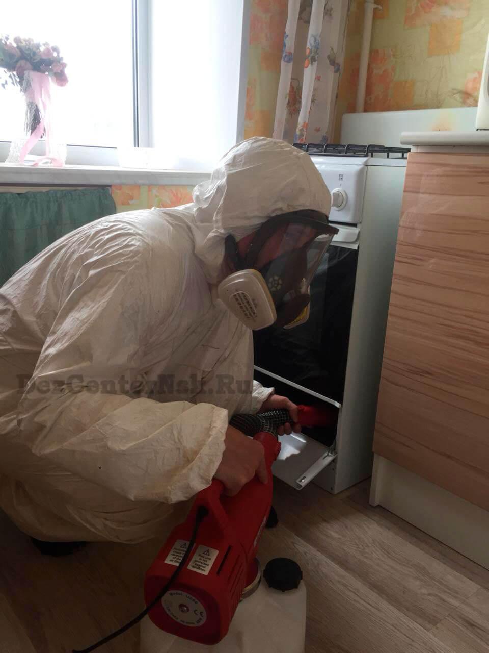 Дезинсекция от насекомых Новосибирск