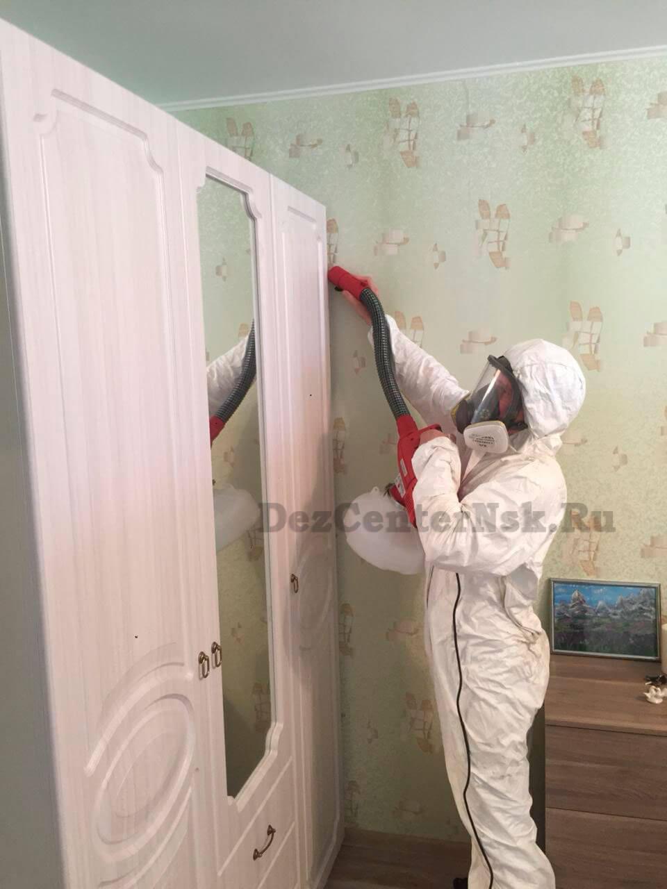 Уничтожение домашних клопов Новосибирск цена