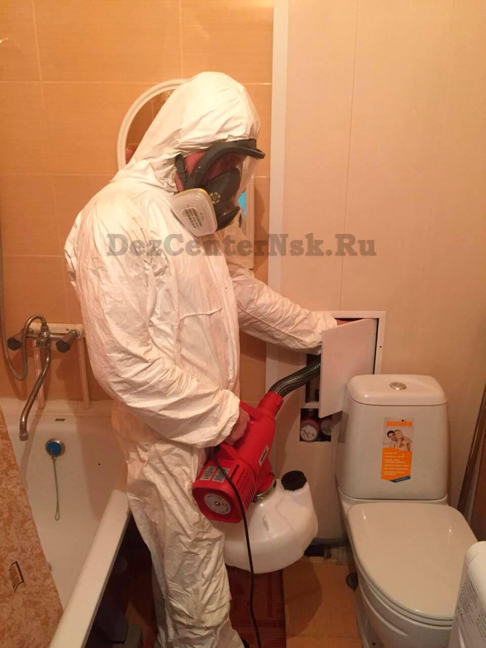обработка от муравьев Новосибирск